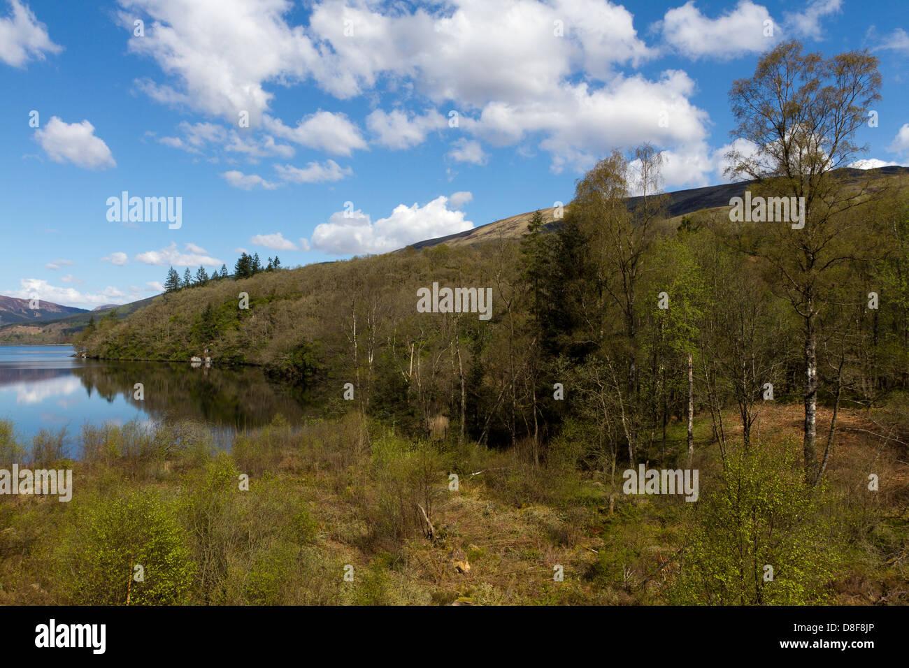 Loch Ard with Ben Lomond in the background, Loch Lomond & The Trossachs National Park, Stirling, Scotland, UK - Stock Image
