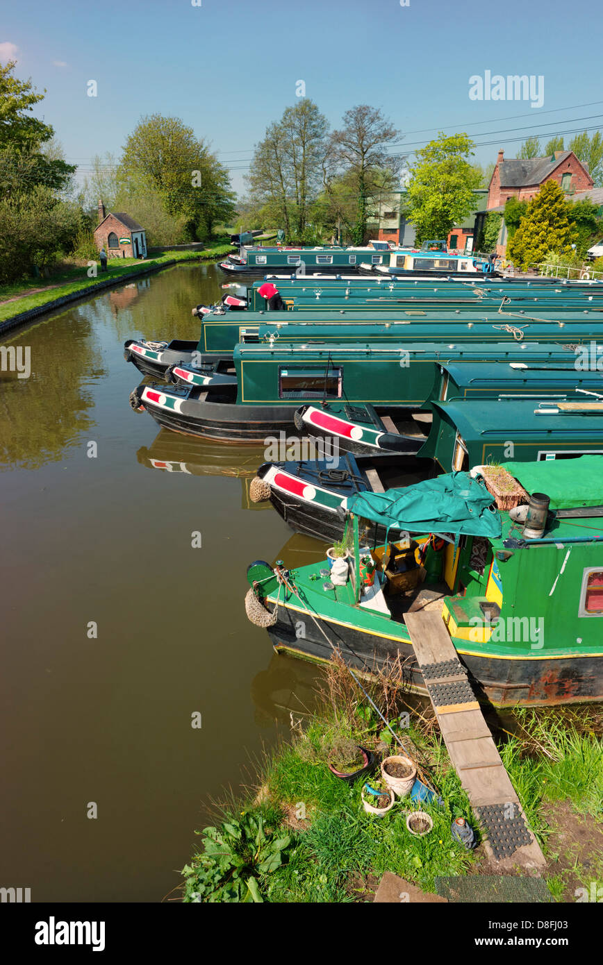Narrow boats moored up in a marina next to the Staffordshire and Worcestershire canal at Great Haywood, Staffordshire - Stock Image