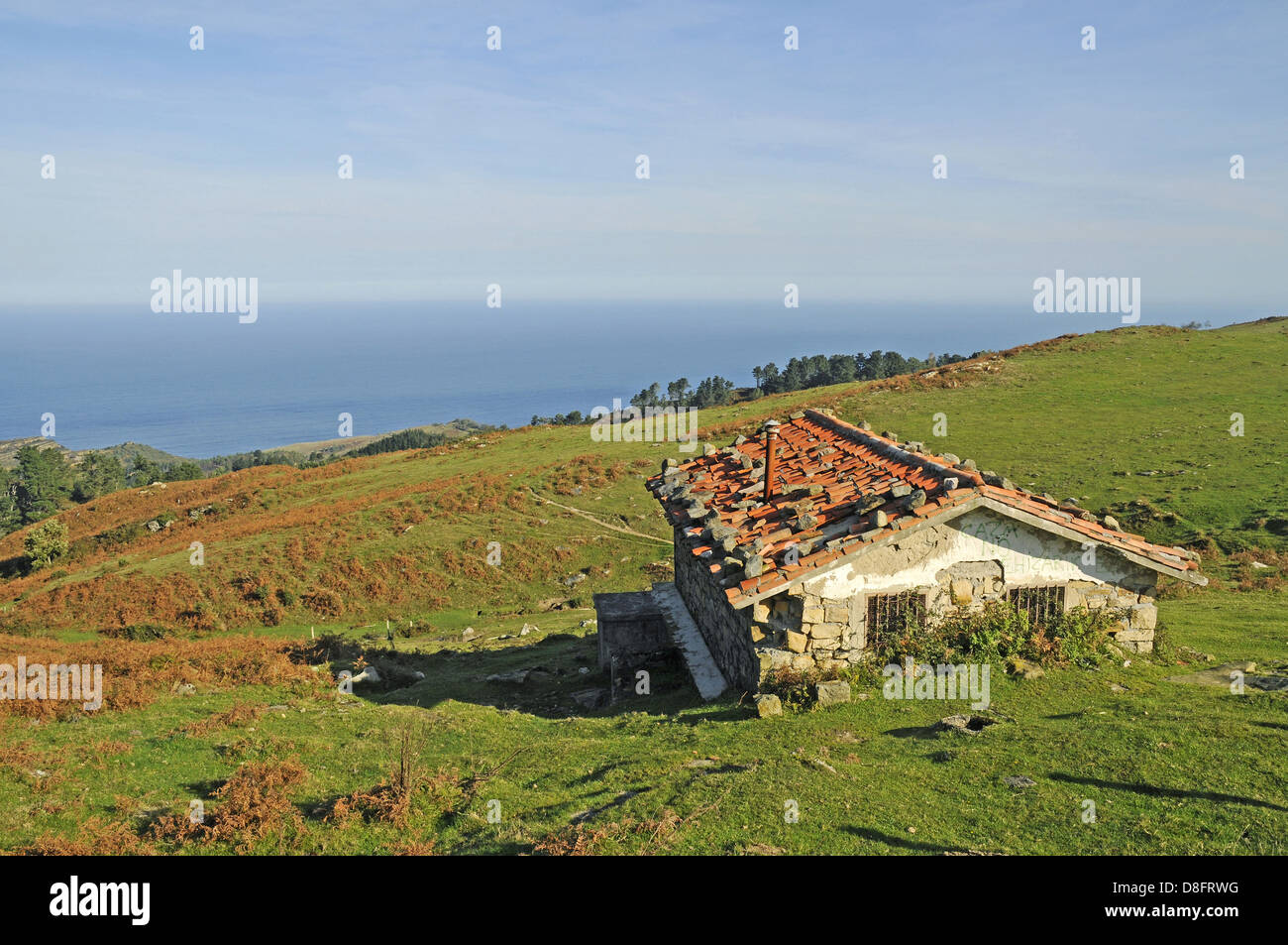small house - Stock Image