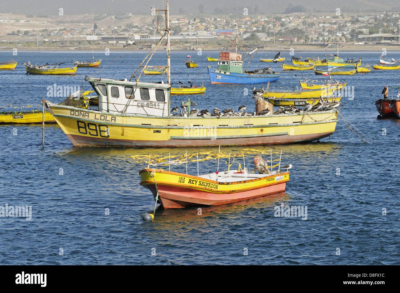 Colourful fishing boats - Stock Image