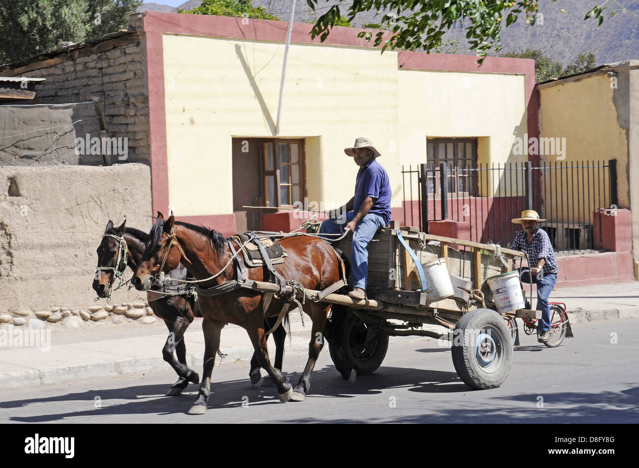 Horse drawn carriage - Stock Image