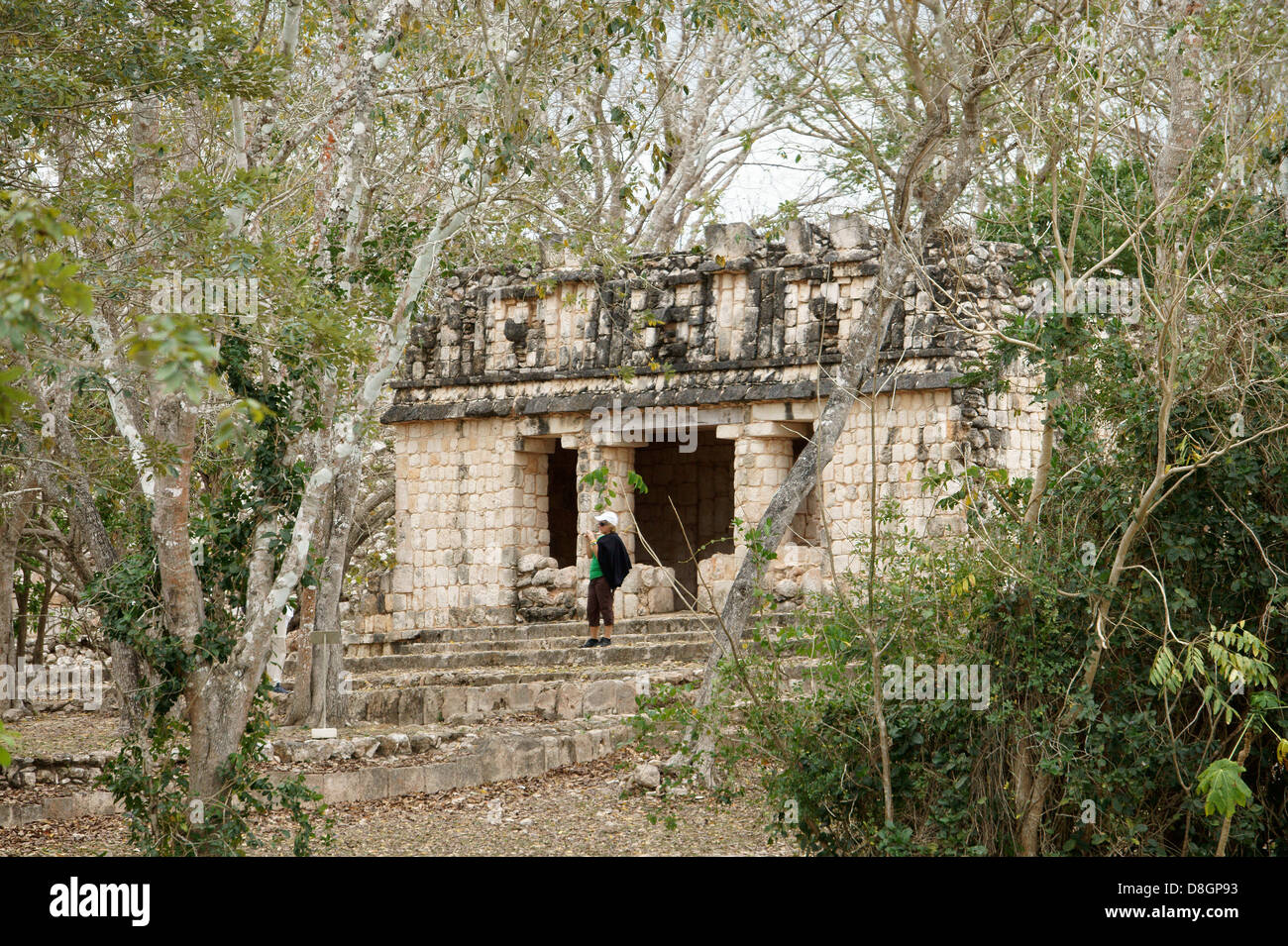Female tourist taking a photo in front of a small Mayan temple shrouded by jungle, Uxmal, Yucatan, Mexico Stock Photo