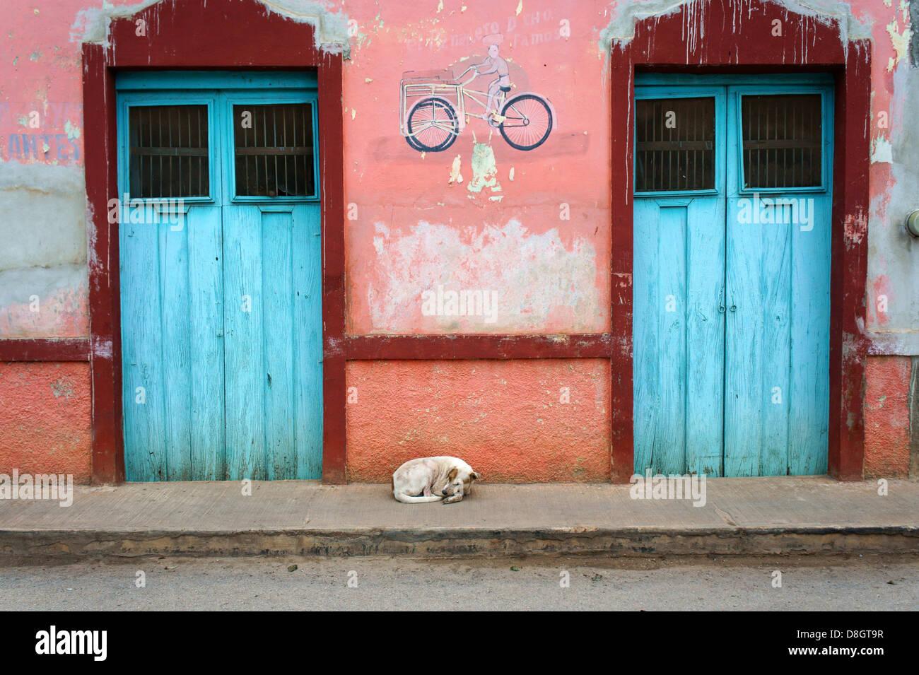 Stray dog sleeping in the sidewalk in Santa Elena, Yucatan, Mexico - Stock Image
