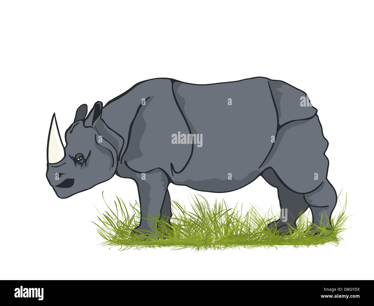 Large rhino - Stock Image