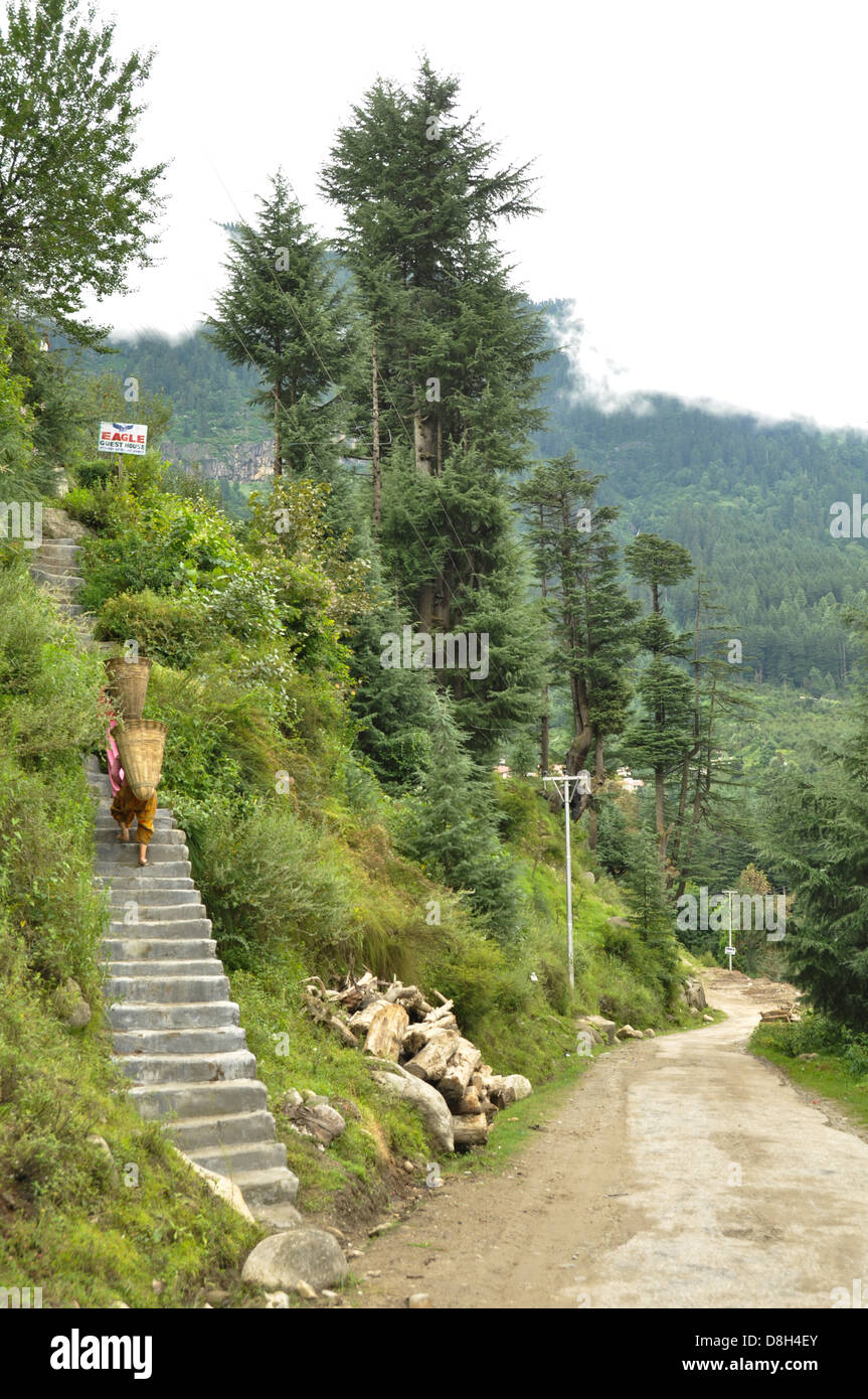 Woman carries basket strapped to her back in Manali,Vashisht, Himachal Pradesh, India - Stock Image