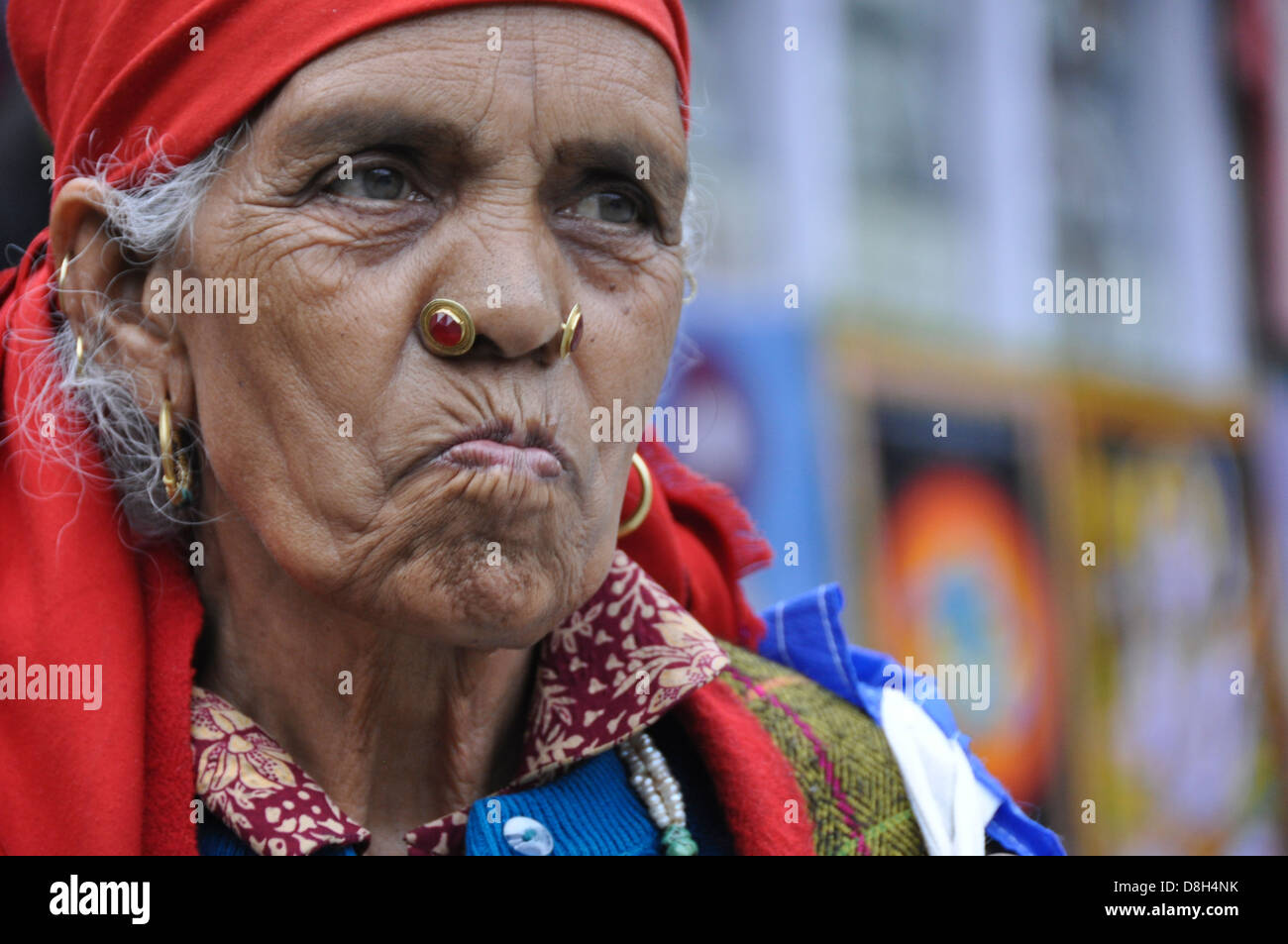 Portrait of a mature woman, India, Himachal Pradesh, Tosh Valley - Stock Image
