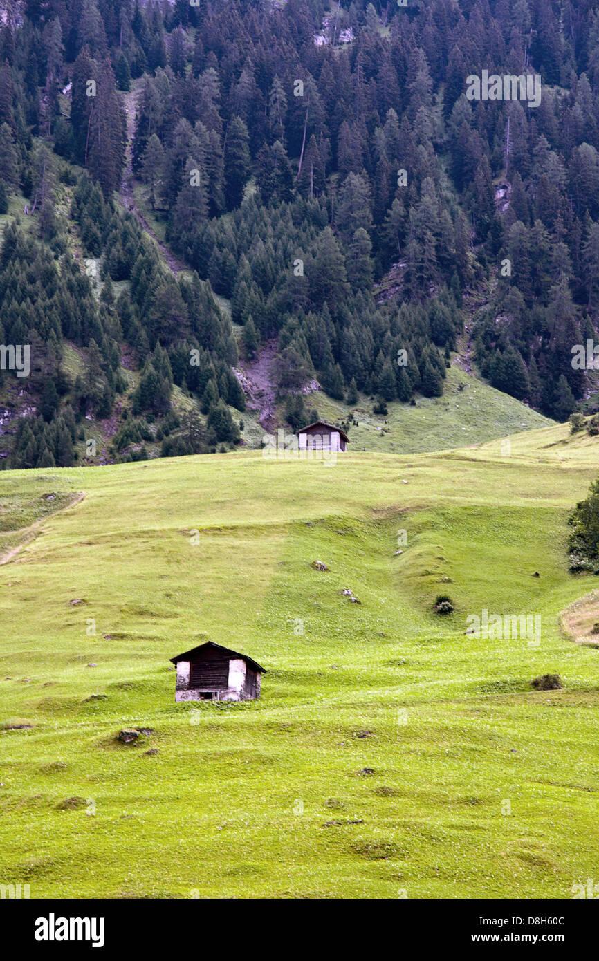Swiss alp - Stock Image