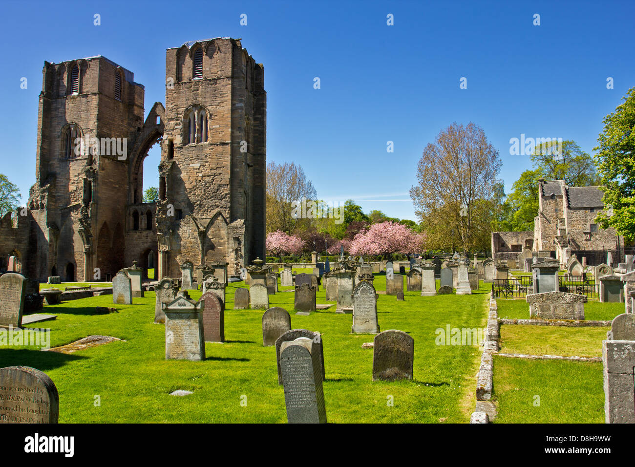 ELGIN CATHEDRAL IN EARLY SPRING A VIEW OF THE TWO MAIN TOWERS MORAY SCOTLAND Stock Photo