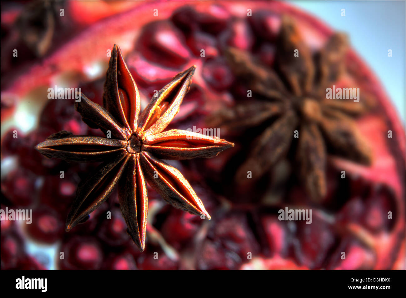 Star Anise Illicium verum anise-like spice used in Chinese cookery - Stock Image