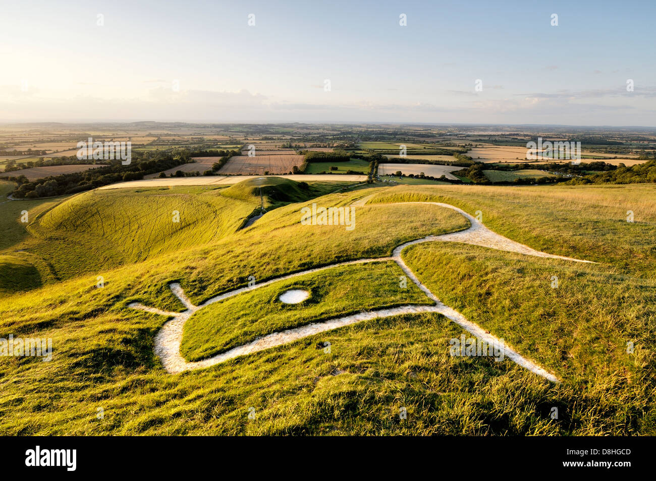 Uffington White Horse. Prehistoric Bronze Age chalk hill figure Oxfordshire, England. Close up over head, eye, ears - Stock Image