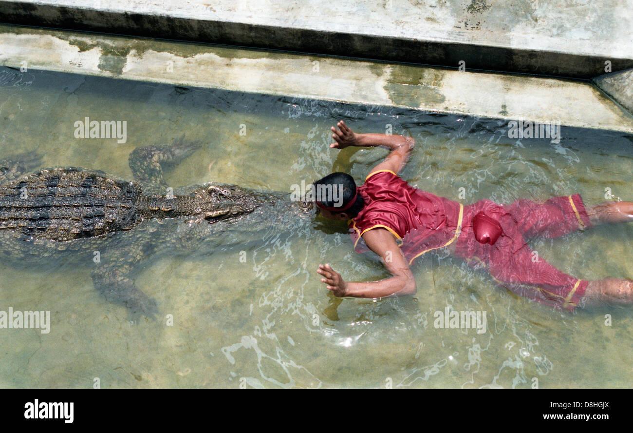 Man kissing a crocodile in a crocodile farm. - Stock Image