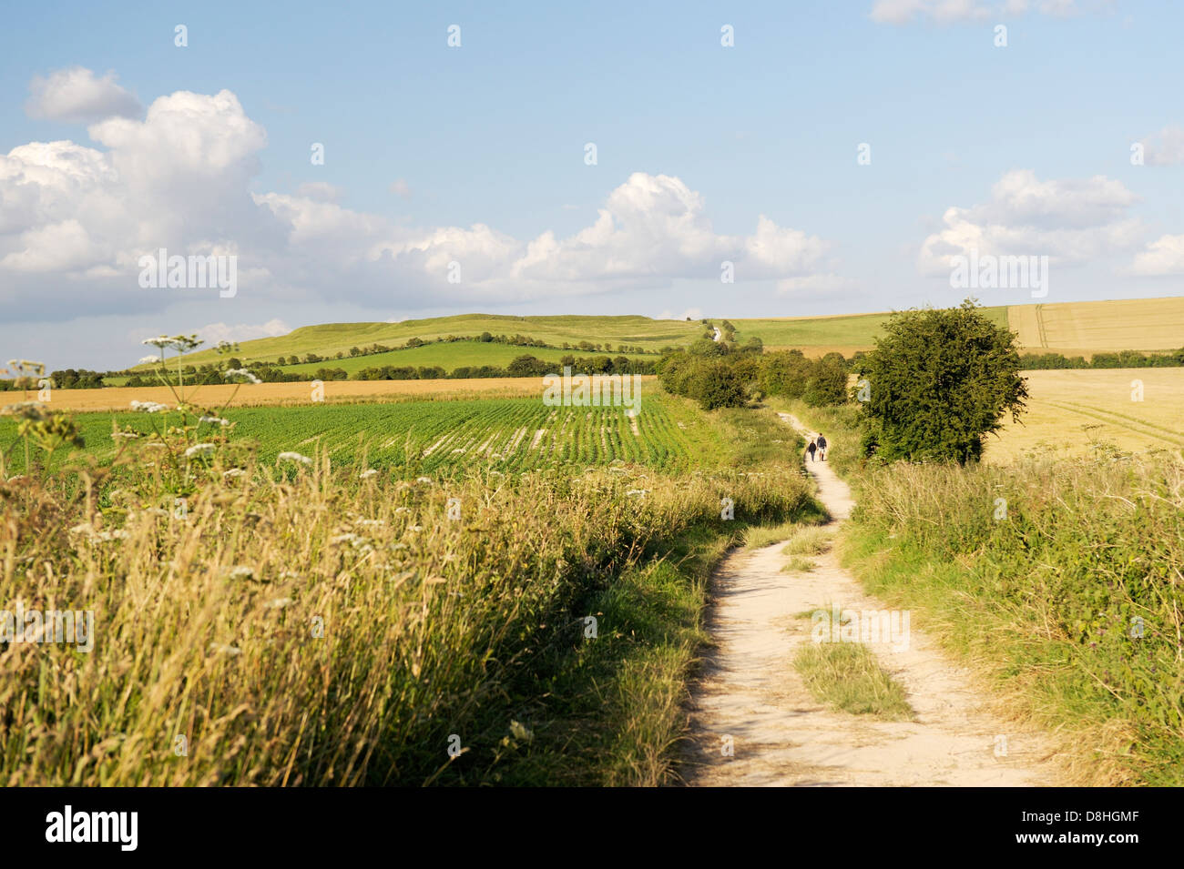 The Ridgeway near Wayland's Smithy toward Uffington Castle. Part of the 5000 year old long distance track. Oxfordshire, - Stock Image