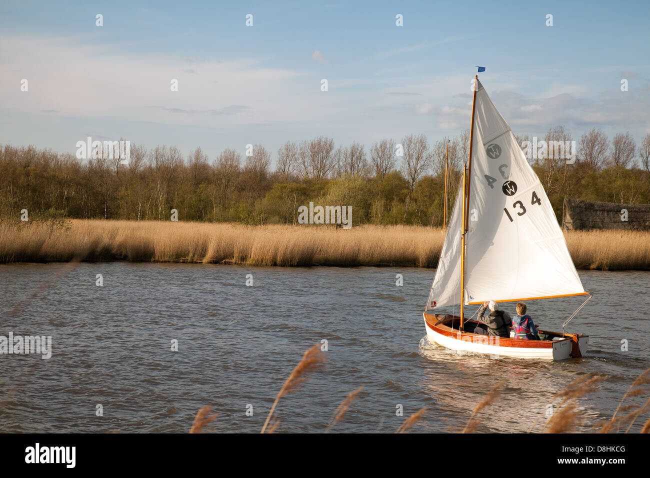 A sailboat sailing on the Norfolk Broads at Horsey Mere, East Anglia England UK - Stock Image