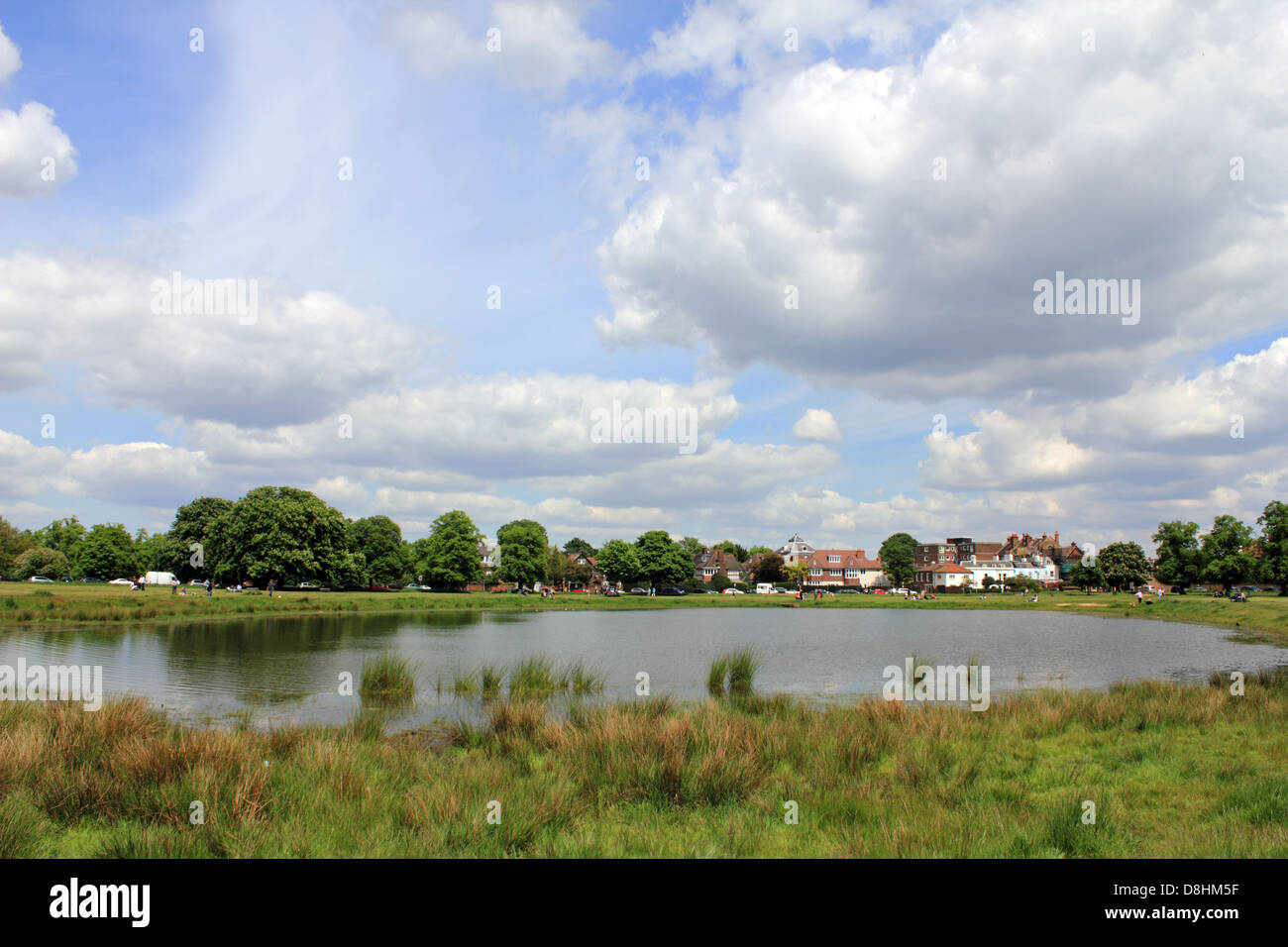 e336539c0c35c Wimbledon Common Summer Stock Photos & Wimbledon Common Summer Stock ...