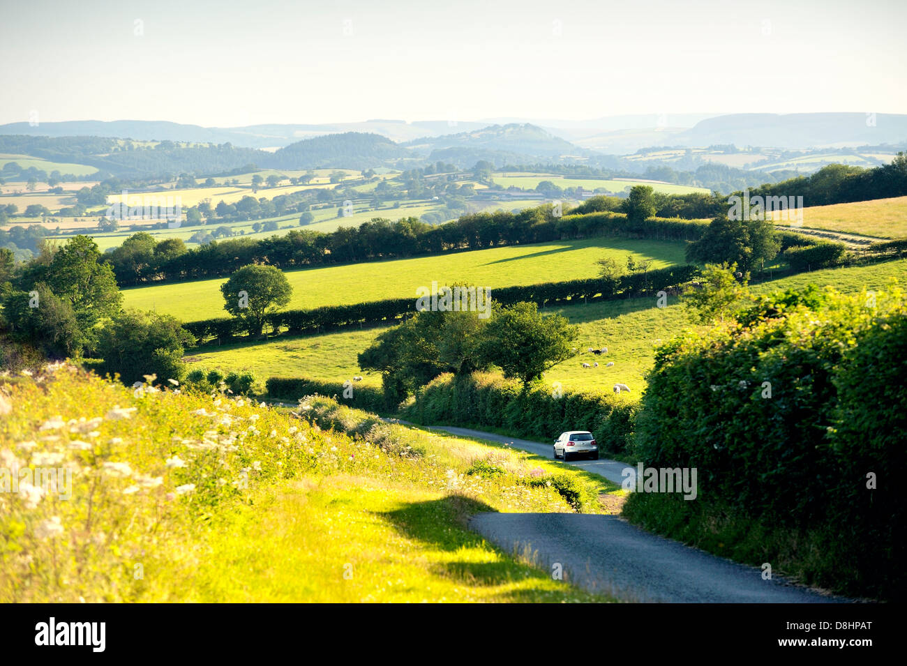 Car driving southwest down country road leading to Little Stretton on the eastern flank of Ragleth Hill, Shropshire, - Stock Image