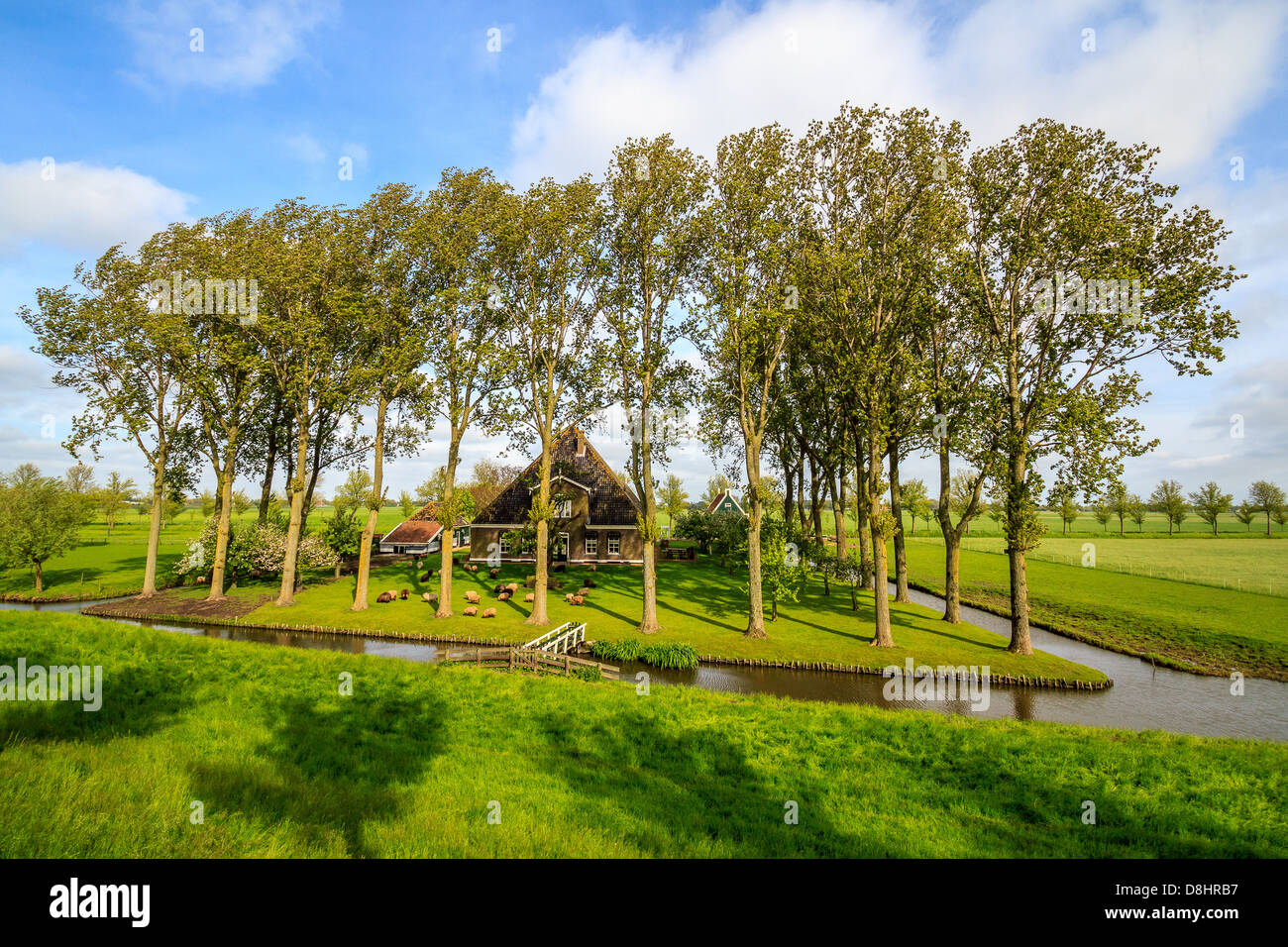 A Farm House In The Polder De Beemster Stock Photo 56939883 Alamy