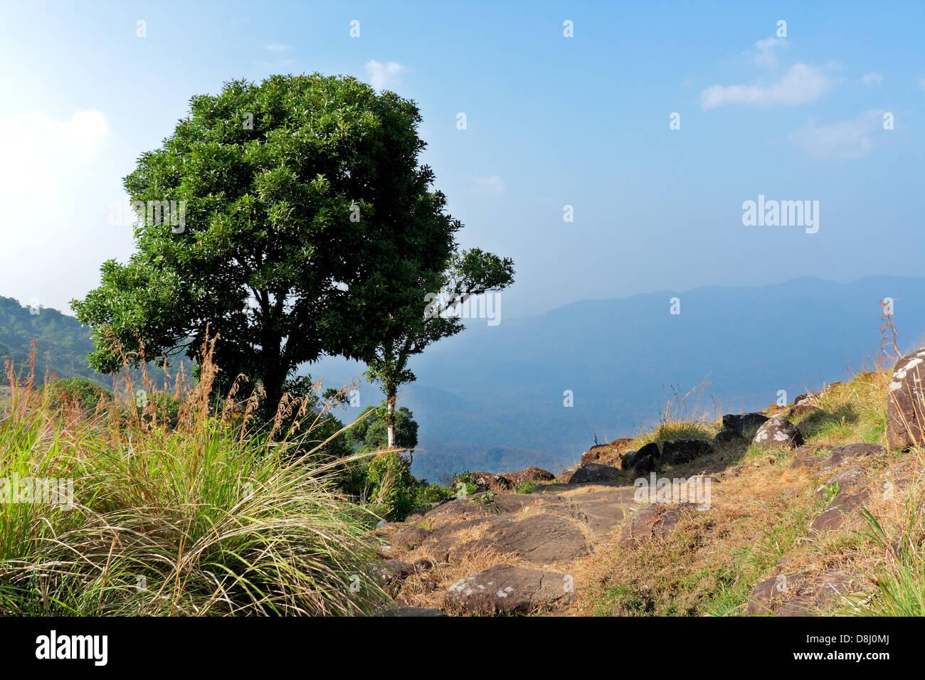 Ponmudi, Thiruvananthapuram, Kerala, India - Stock Image