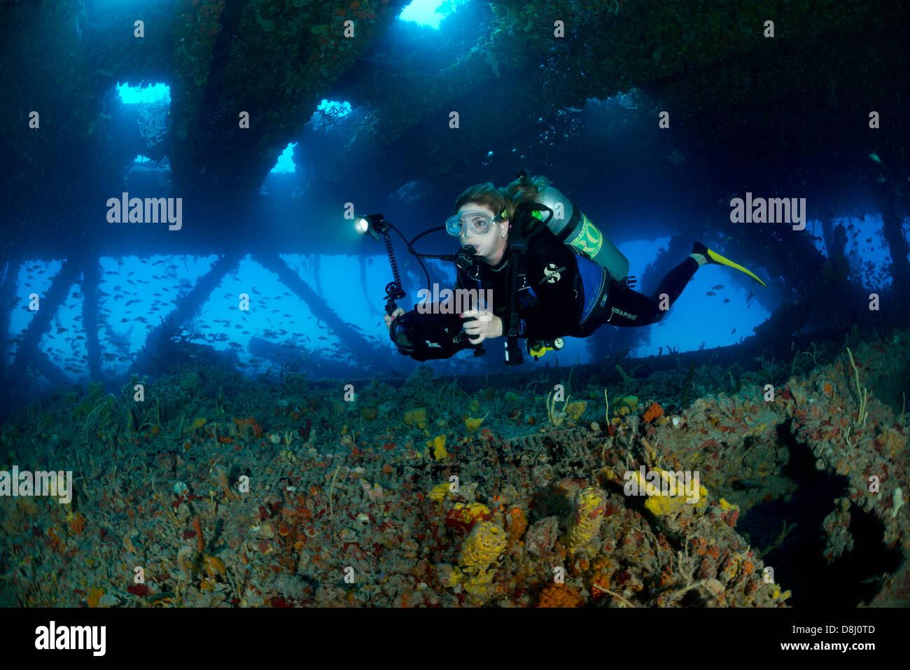 Key West Dive Shops