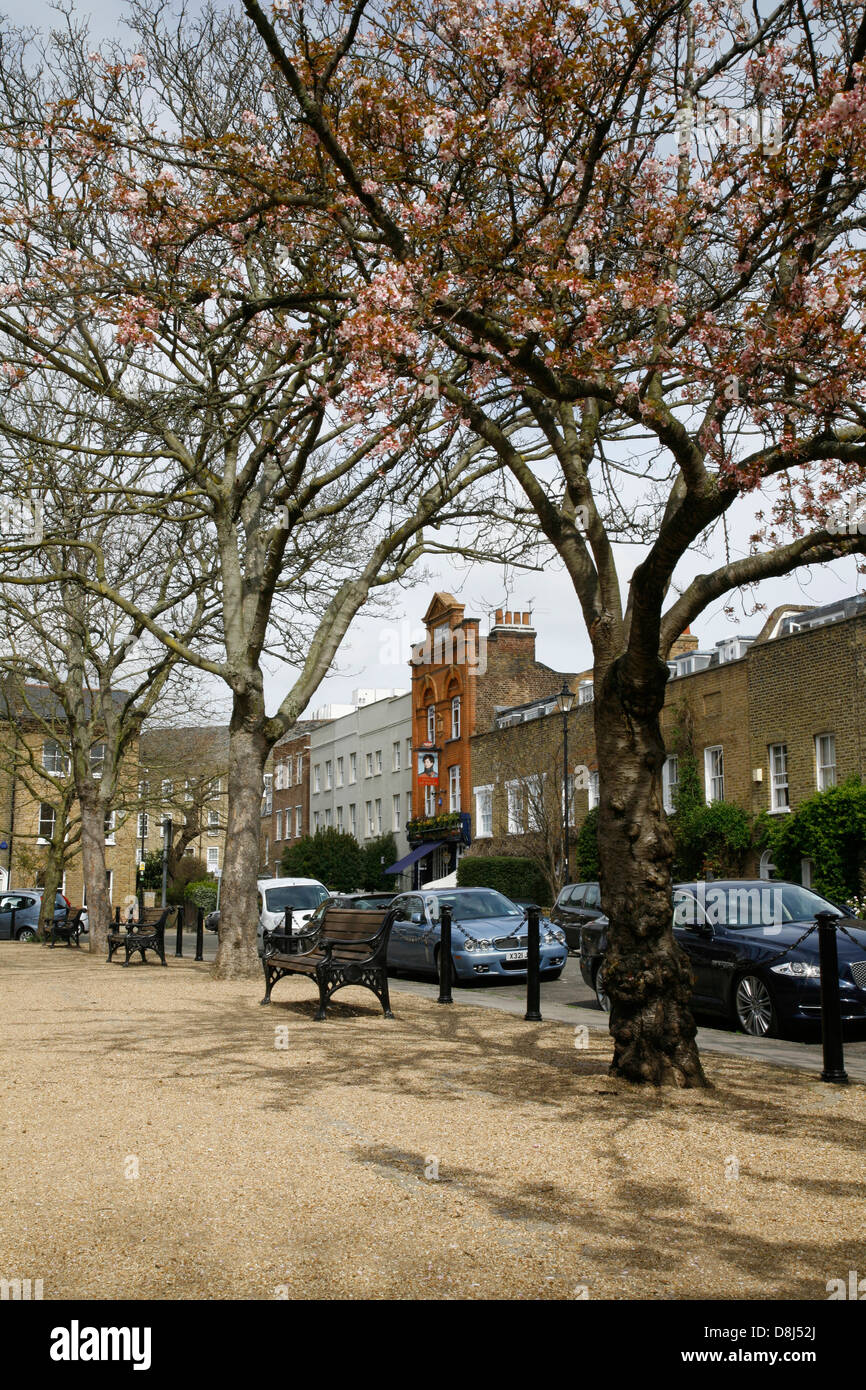 Looking towards the Prince of Wales pub in Cleaver Square, Kennington, London, UK - Stock Image