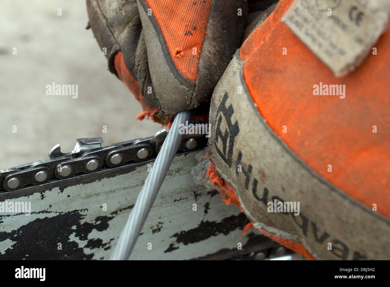 Sharpening the blades of a chain saw blade - Stock Image
