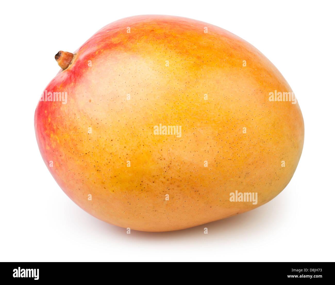 mango one yellow on white background - Stock Image