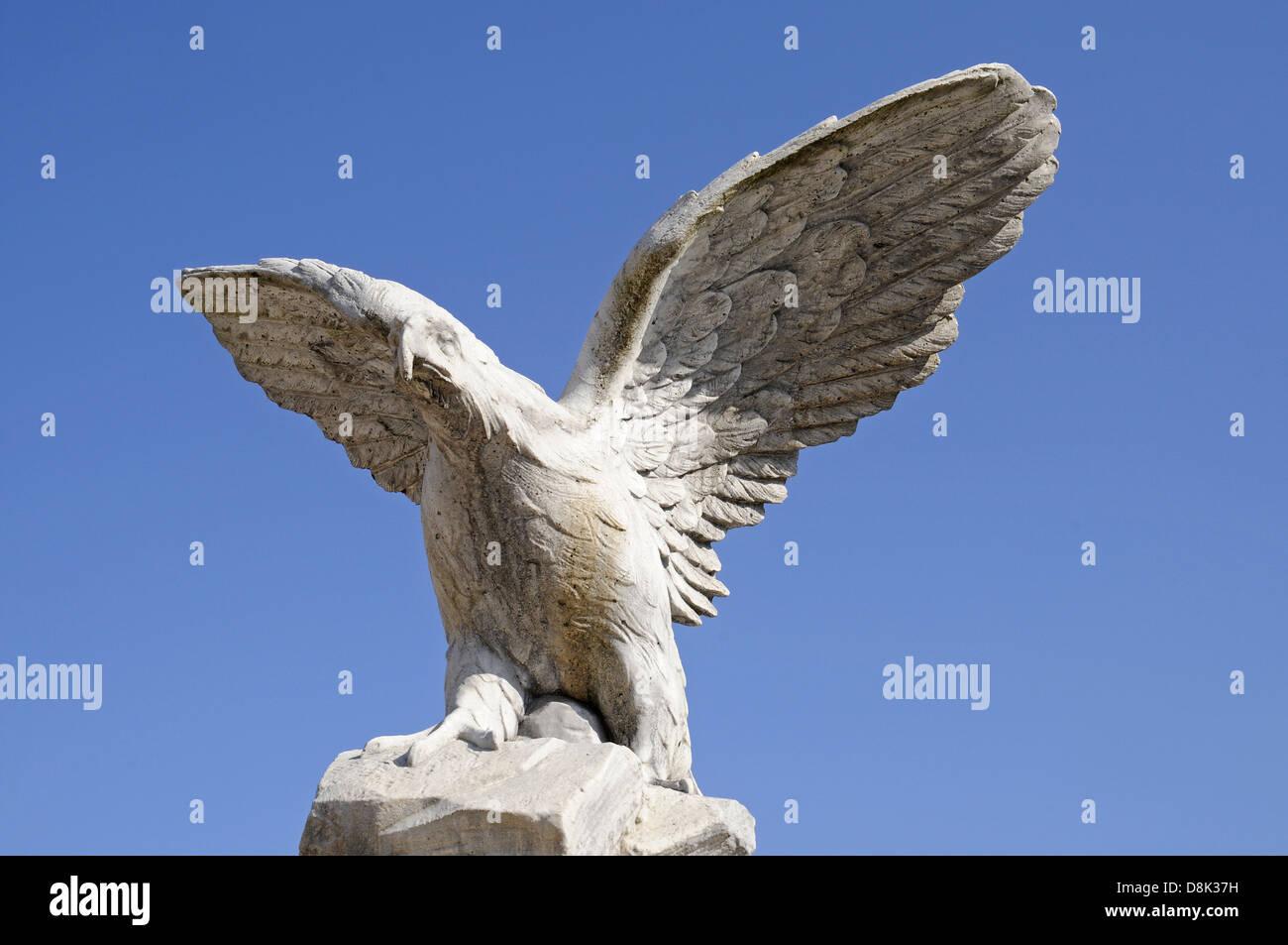 Eagle - Stock Image
