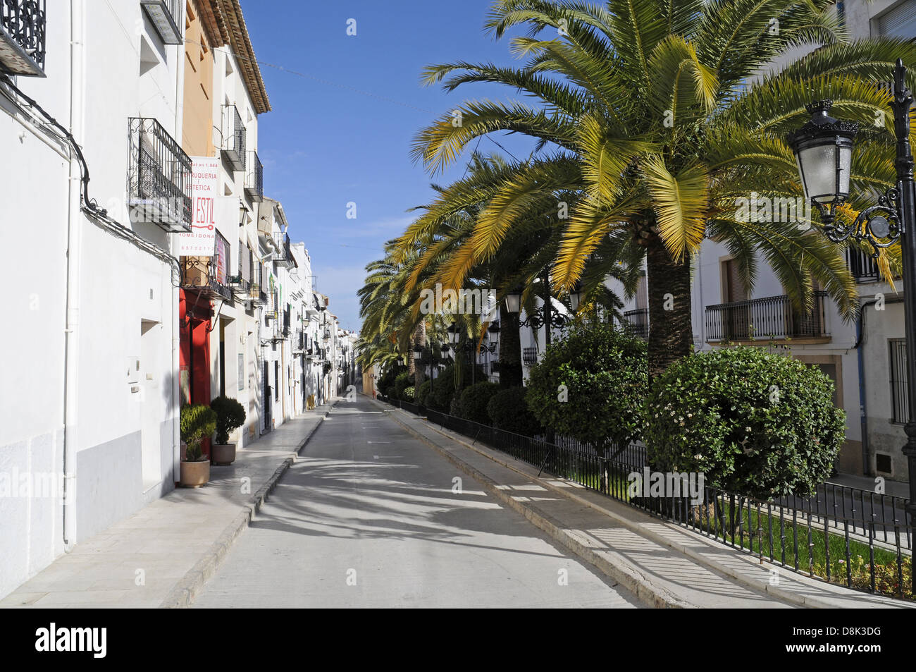 Road with palm trees in the old town Stock Photo
