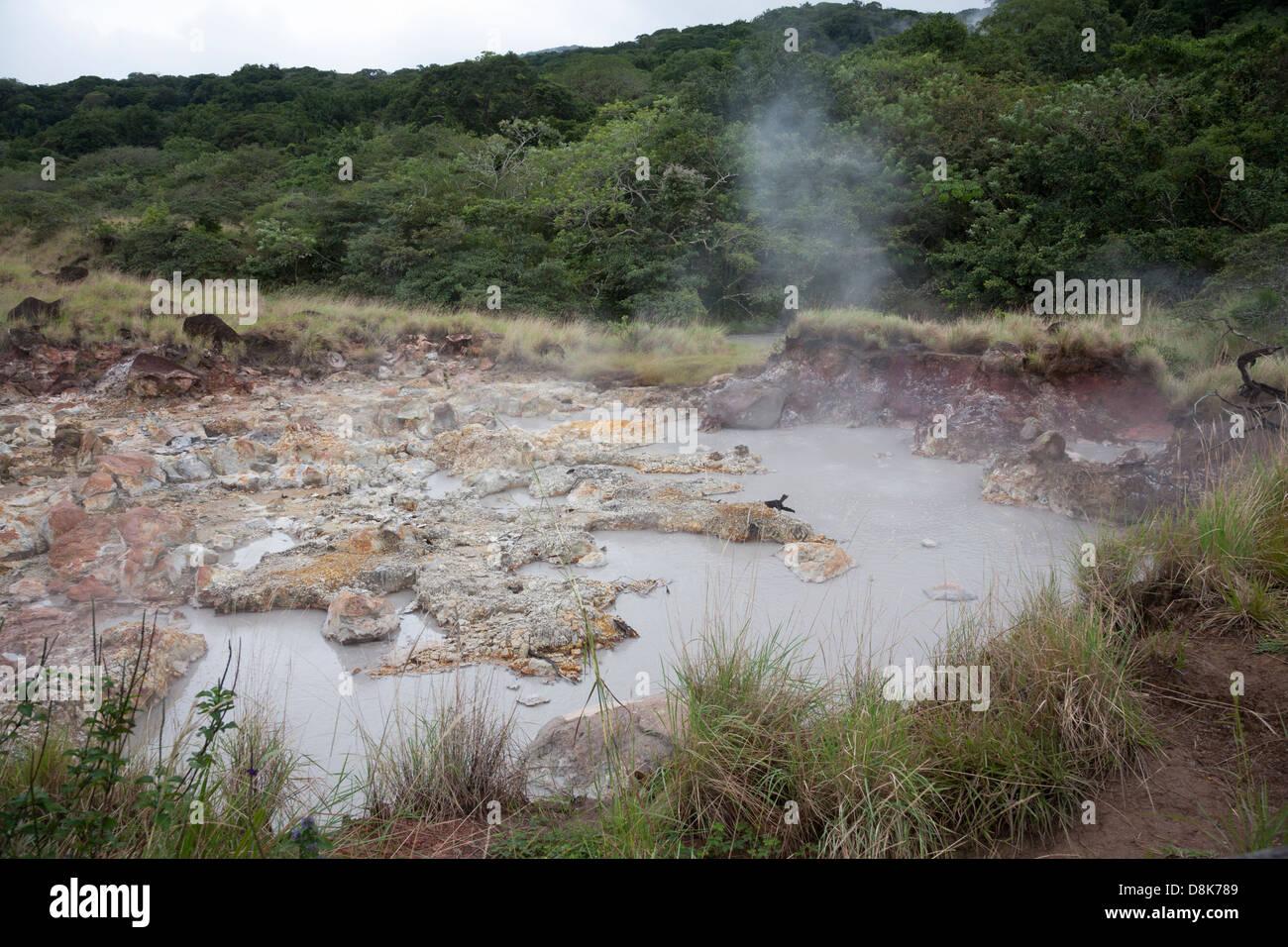 Fumaroles, boiling water and steam, Rincon de la Vieja National Park, Costa Rica - Stock Image