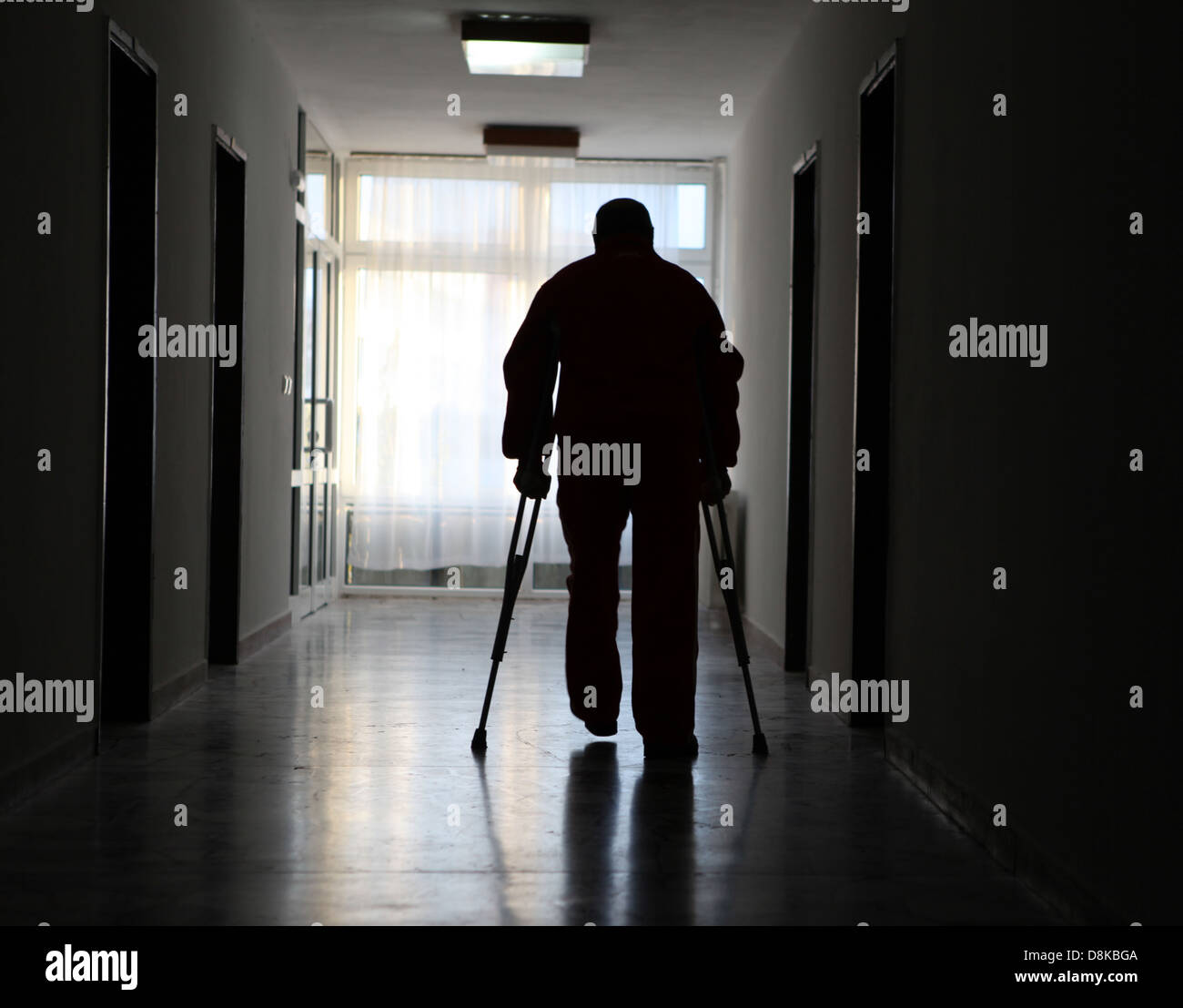 disabled - Stock Image