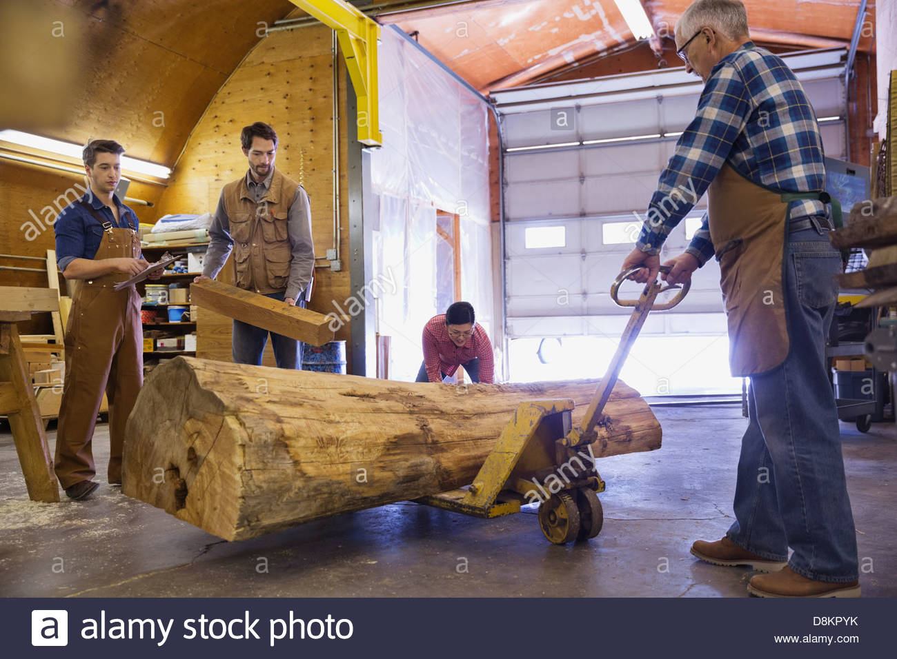 Woodworkers moving a large log in workshop - Stock Image