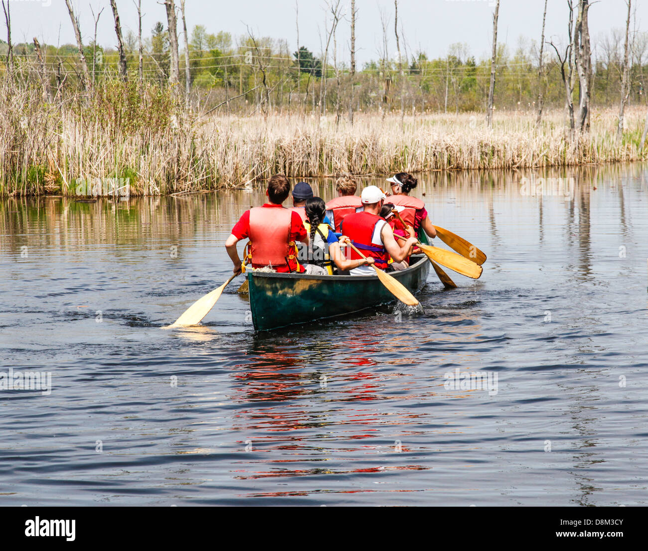 Canoe trip in the wetlands at Wye Marsh in Midland;Ontario;Canada;North America - Stock Image