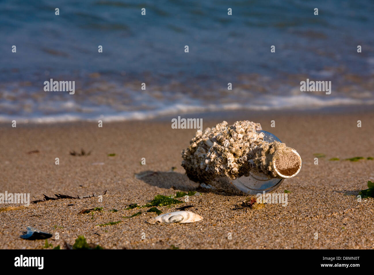 Old bottle at the beach. Survivor message. - Stock Image