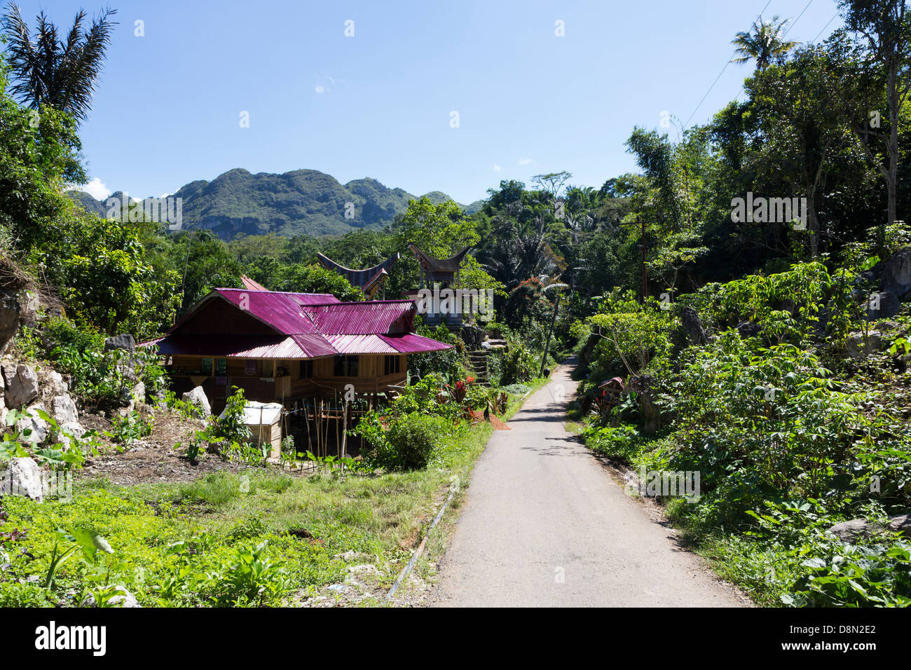 Tana Toraja countryside with traditional houses in Sulawesi, Indonesia - Stock Image