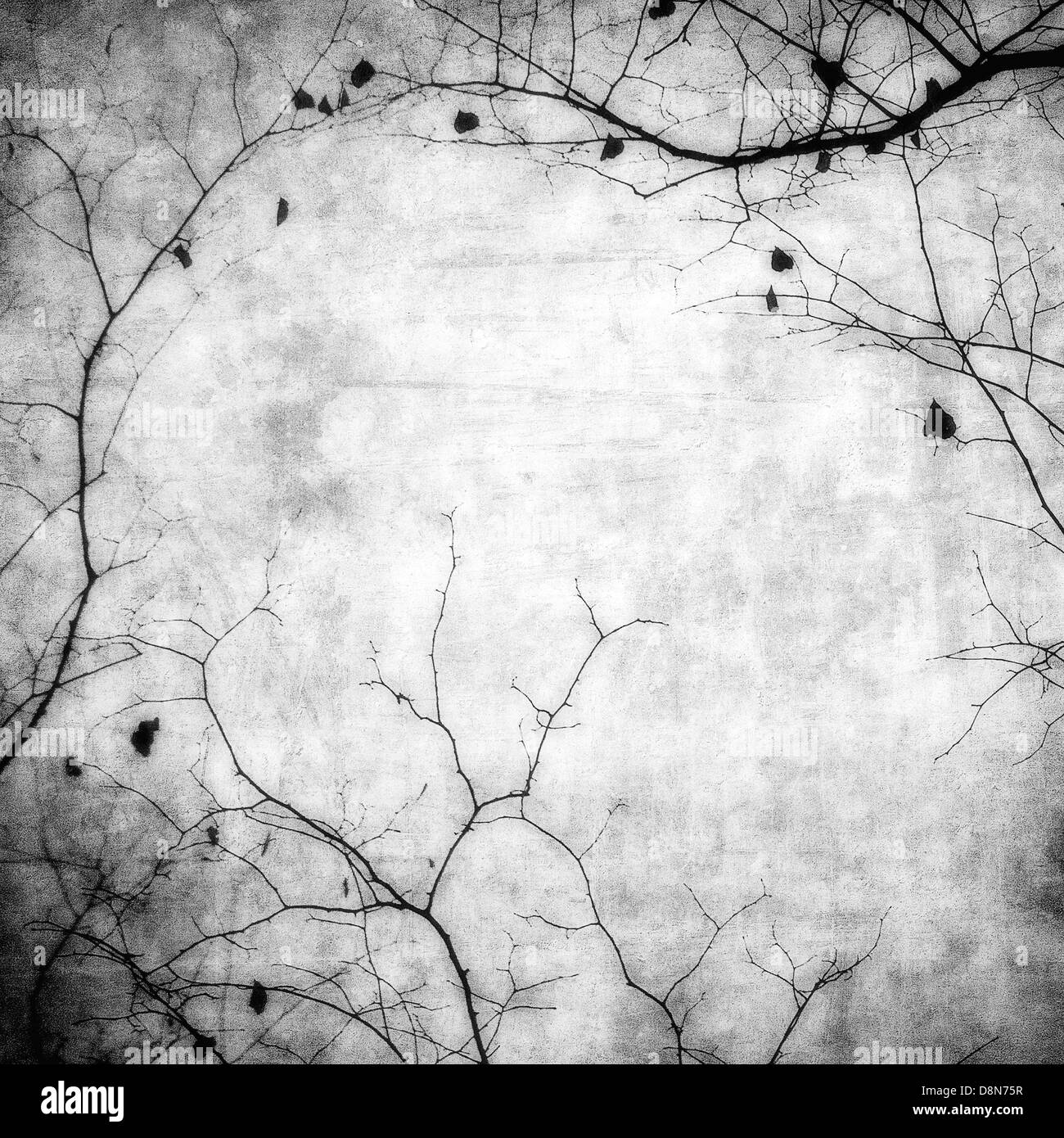 grunge frame with tree silhouettes - Stock Image