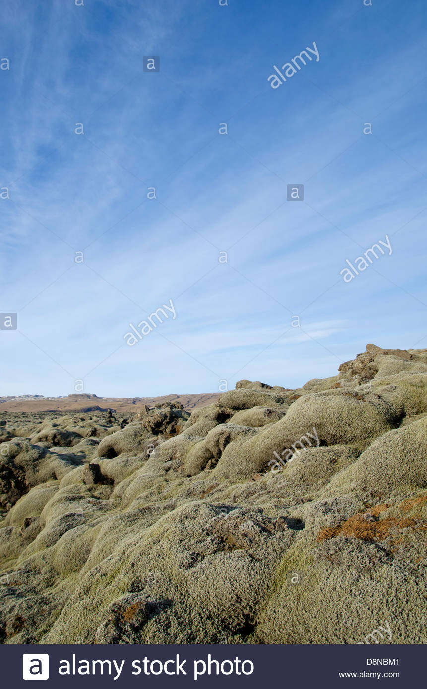 Lava Fields, Iceland - Stock Image