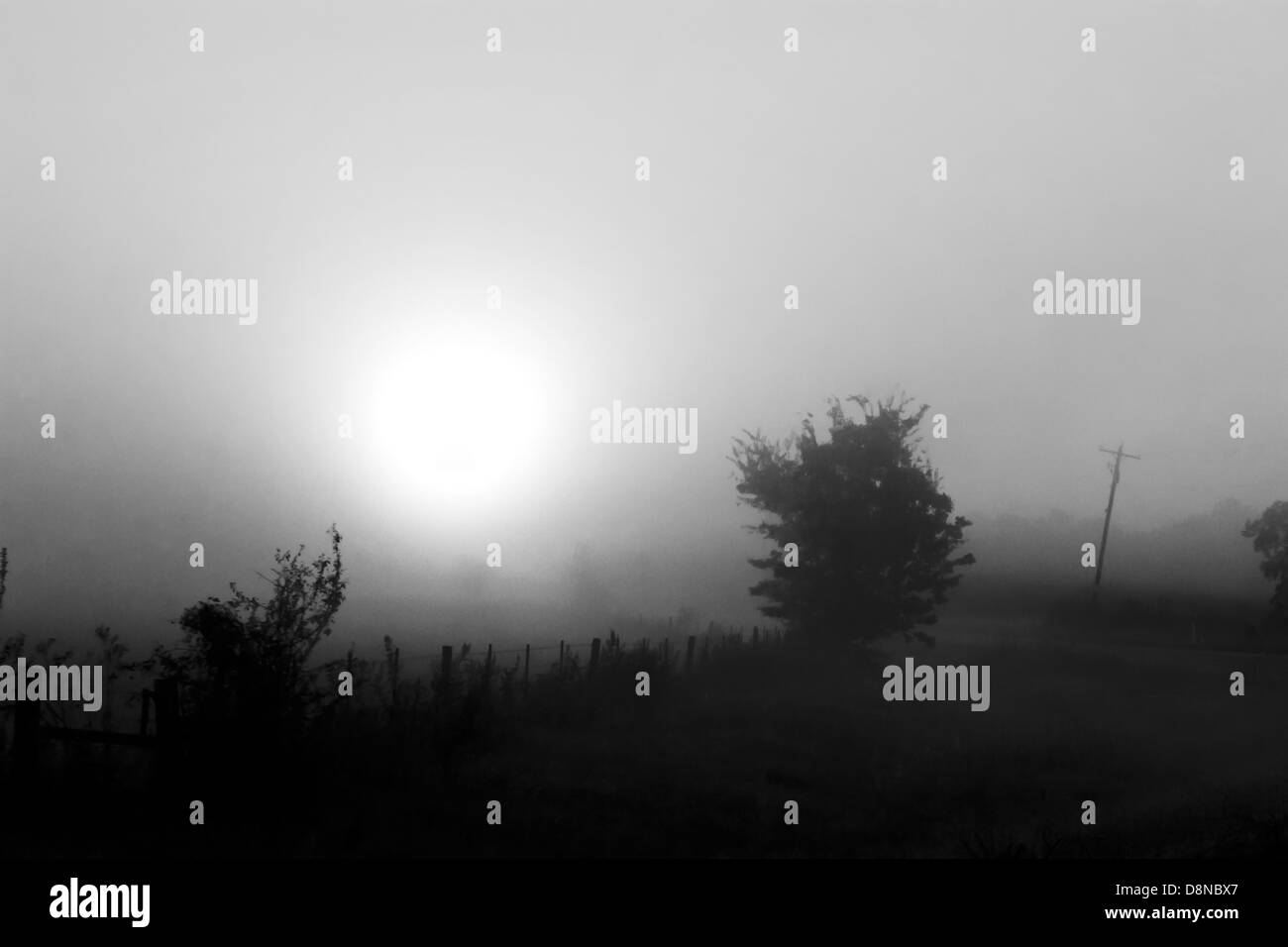 Black and white image of a rising sun over countryside - Stock Image