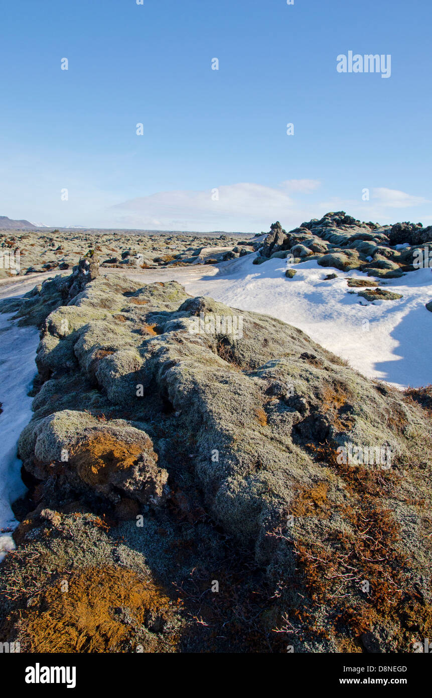 Lava fields, Iceland - Stock Image