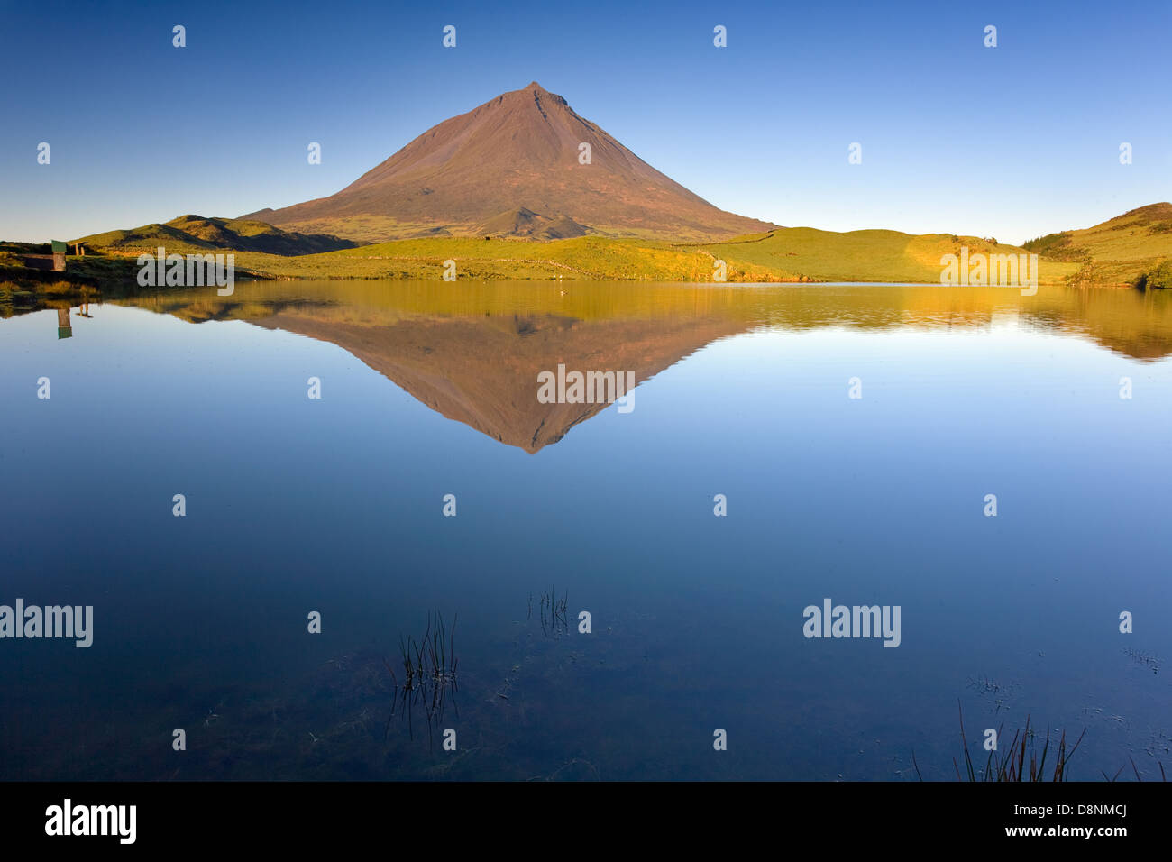 Pico Mountain reflected in Captain Lagoon at sunrise - Pico island - Azores - Stock Image