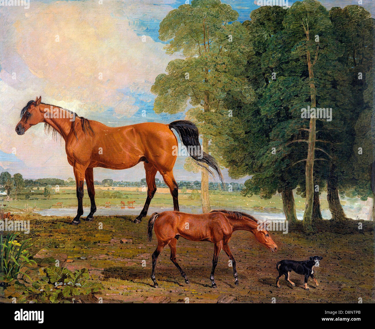 Benjamin Marshall, Broodmare with Foal, and a Terrier 1822 Oil on canvas. Yale Center for British Art, New Haven, - Stock Image