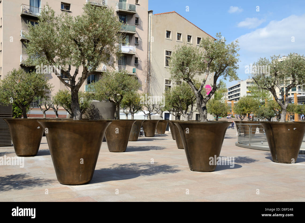 Giant planters or flower pots olive trees near the town hall marseille france stock