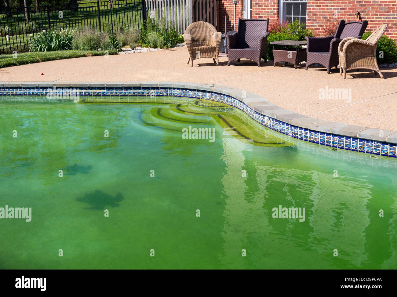 Back Yard Swimming Pool Behind Modern Single Family Home At Pool