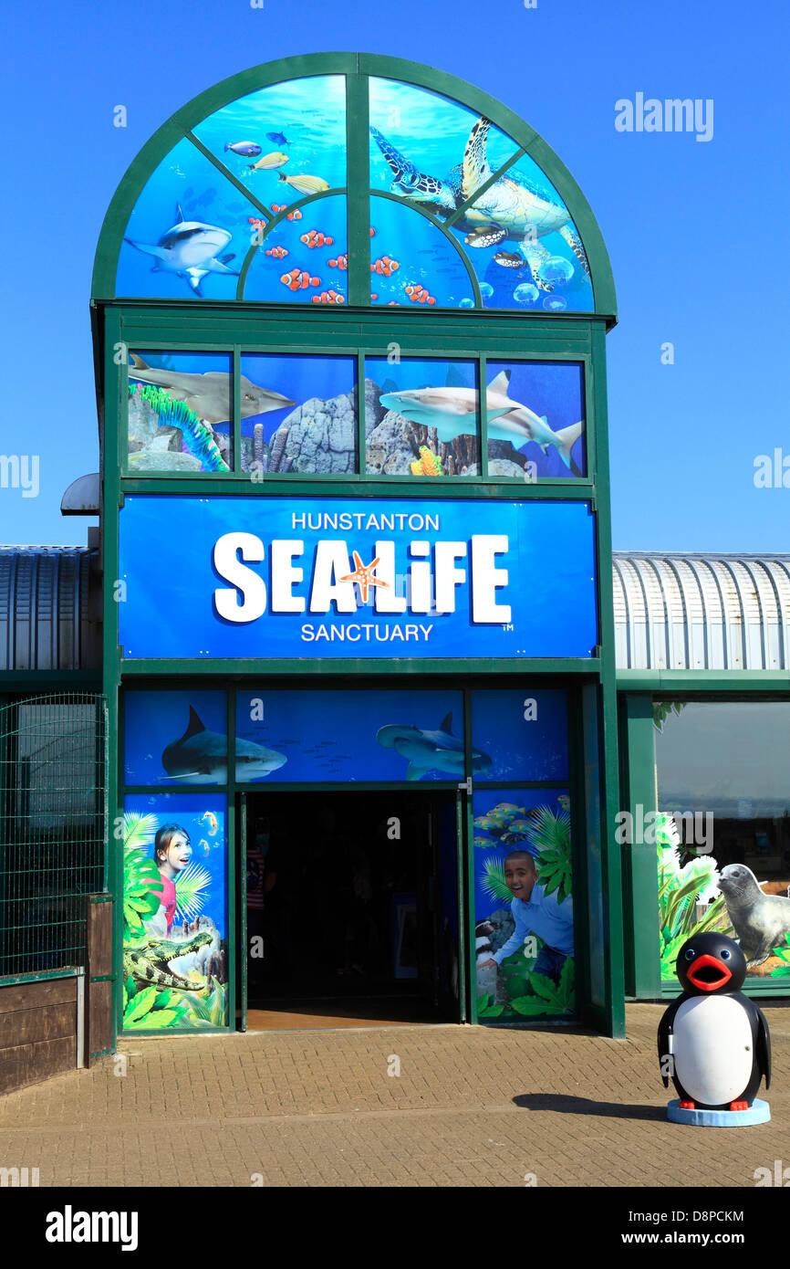Hunstanton, Norfolk, Sea Life Sanctuary, centre, Sealife, England UK - Stock Image