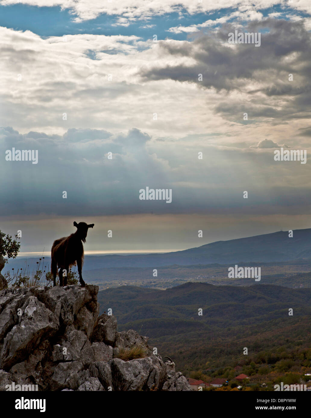 wasteland landscape, Shkodra, Montenegro Stock Photo