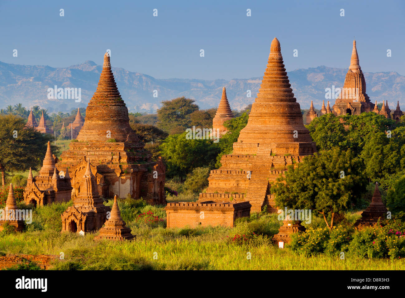 Some of the 4000 ancient temples on the plain of Bagan (or Pagan) in Burma (or Myanmar). A UNESCO World Heritage - Stock Image
