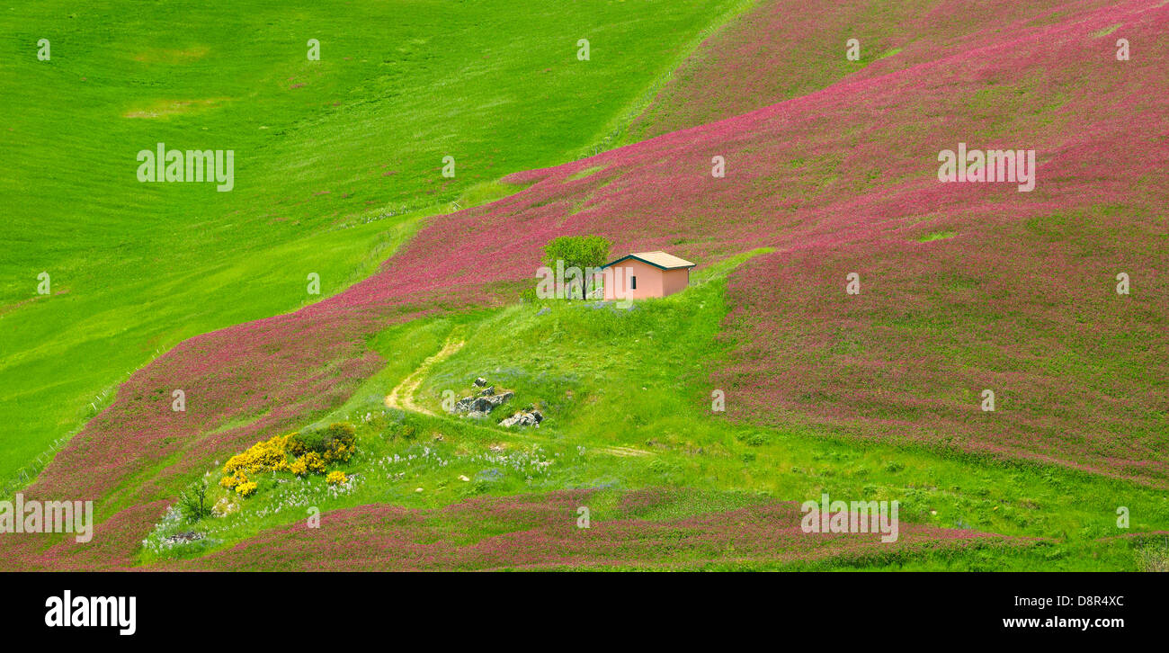 Sicily spring landscape with flowers in Central Sicily, Italy - Stock Image