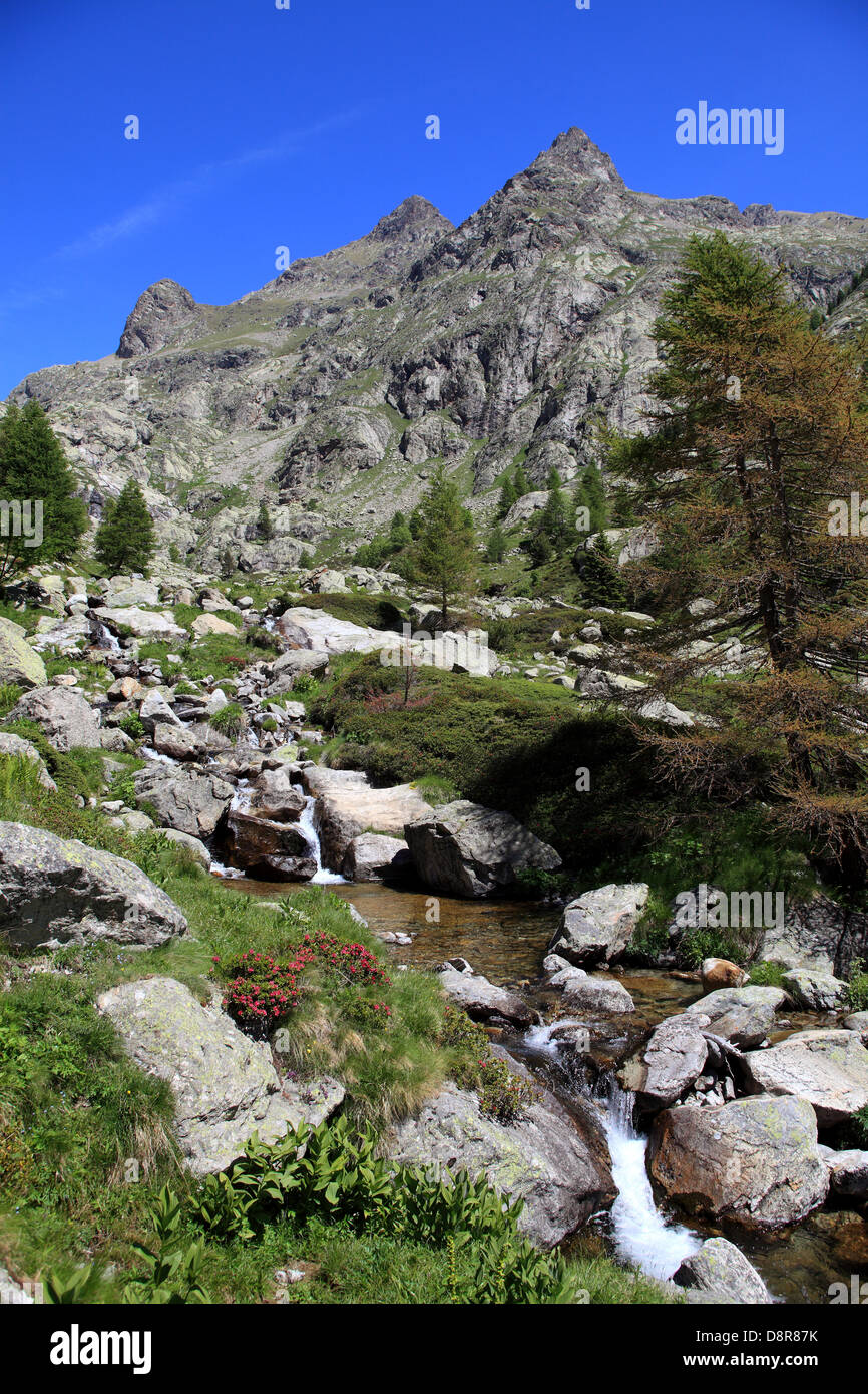 The Gordolasque valley in the Alpes-Maritimes  in the Mercantour national Park, France Stock Photo