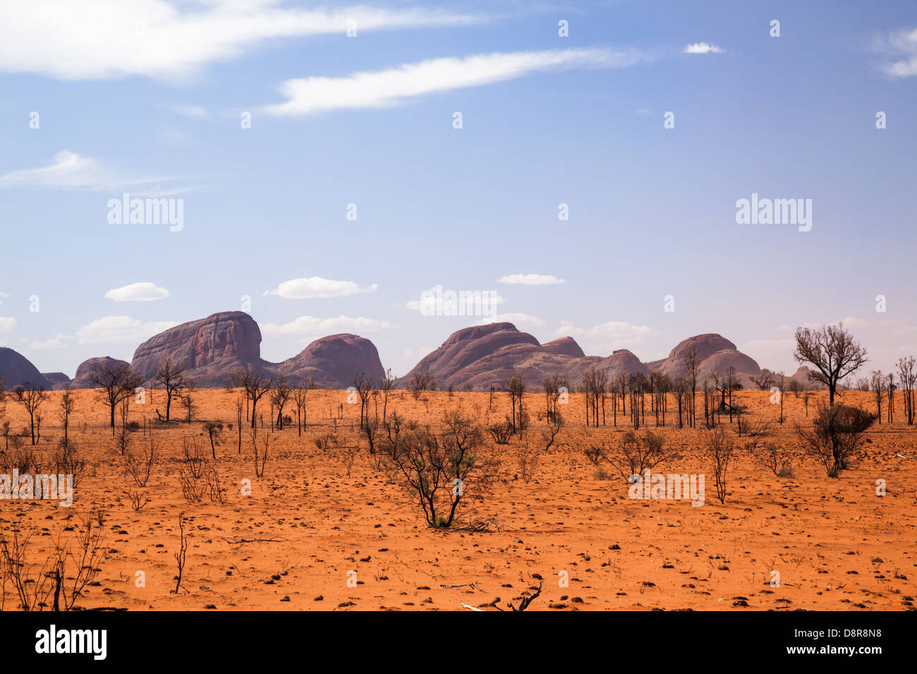 Kata Tjuta (mount Olgas) in the outback, red centre, Northern Territory, Australia. - Stock Image