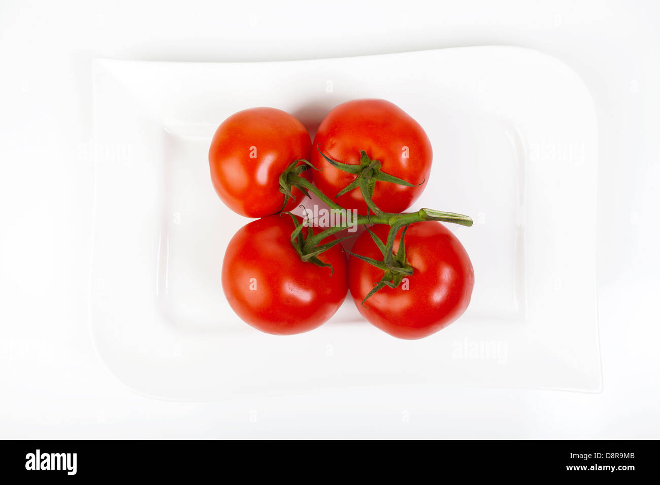 Four whole trusses of tomatoes on a white porcelain plate - Stock Image