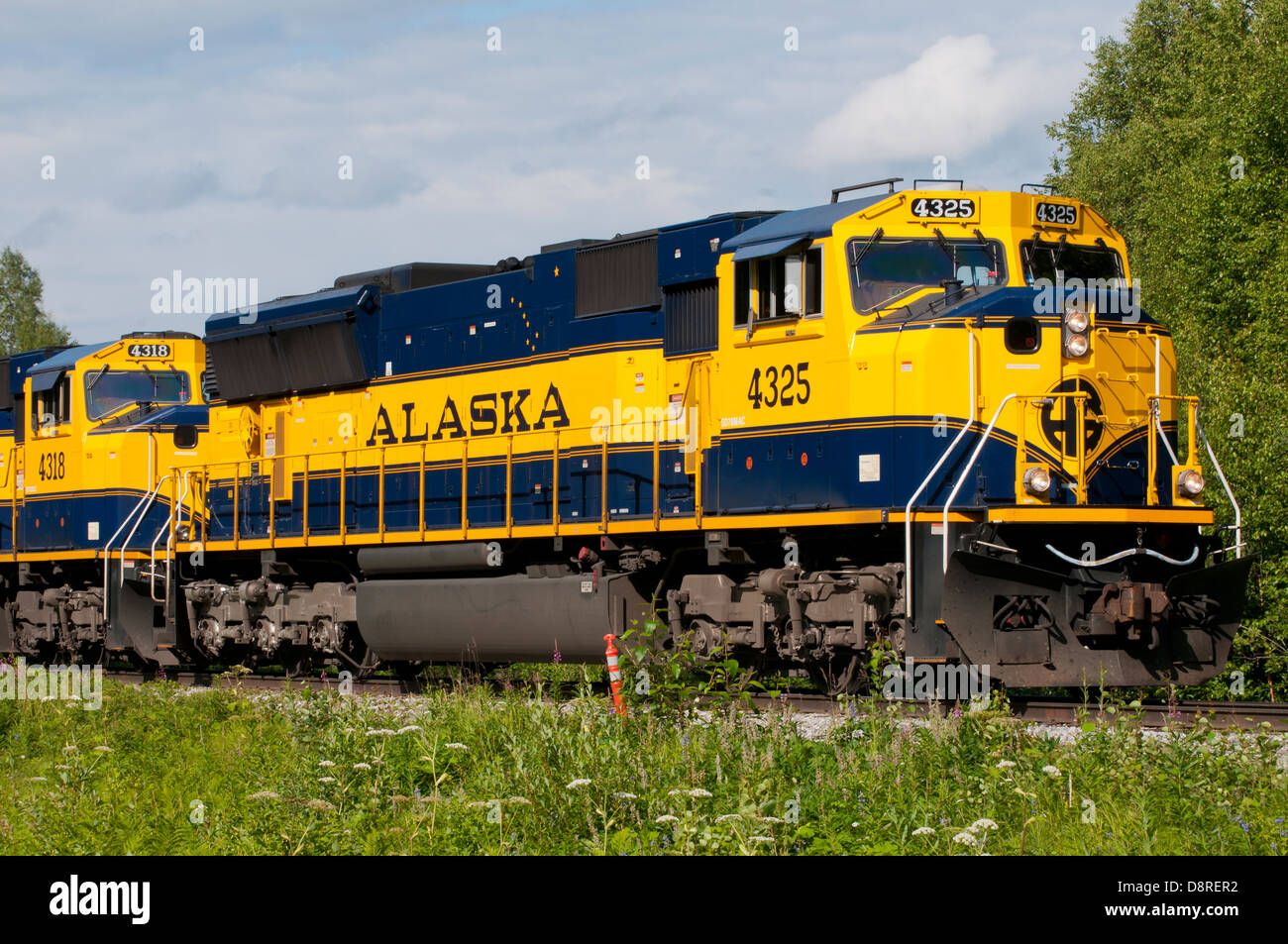 Train in Alaska,USA - Stock Image