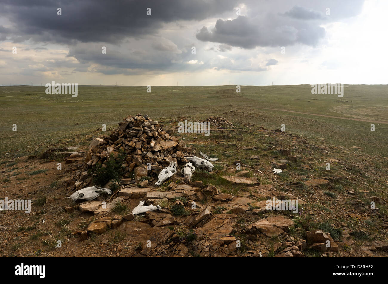 Mongolian landscape - Stock Image